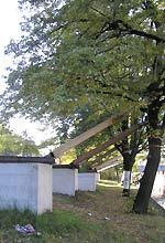 Brockelmanns Würfel