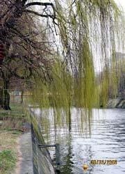 Schöneberger Ufer