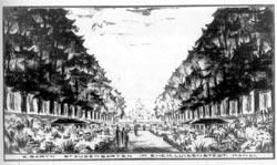 Erwin Barths Gestaltungsvorstellung des Staudengartens
