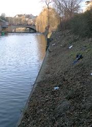 Strauchrodung am Paul-Lincke-Ufer