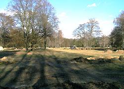 Schlachtfeld Tiergarten
