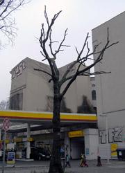 Linde Görlitzer Str.