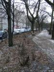 Grimmstraße 02