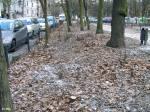 Grimmstraße 04
