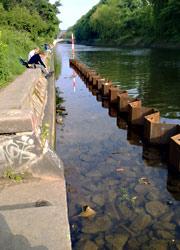 Teststrecke Paul-Lincke-Ufer