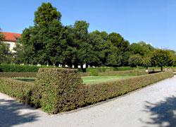 Münchner Hofgarten 01