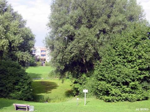 Hufeisensiedlung 02