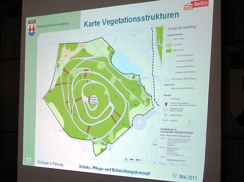 Vegetationsstrukturen
