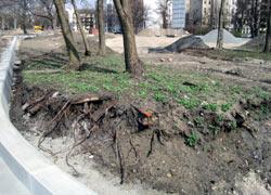 Verstoß gegen DIN zu Baumschutz am Bau