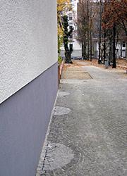 Ausmerzung des Fassadengrüns
