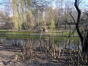 Frühlingsschnitt am Landwehrkanal 2012