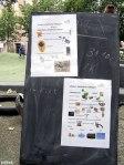 Lernort Stadtnatur im Ottopark