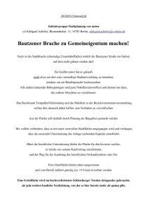 Bautzener-Brache-Flyer