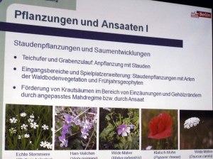 Pflanzungen + Ansaaten II