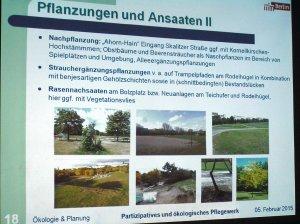 Pflanzungen +Ansaaten II