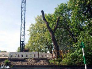 BWB-Neubau Einlauf Baewaldbrücke